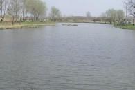 Tőzeges Horgásztó