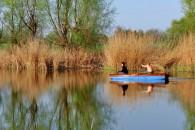 Kovácshidai Horgásztavak