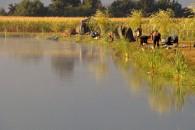 Sáska horgásztó horgásztó - Ebes