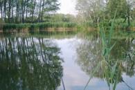 Megyesi tó horgásztó - Csanytelek
