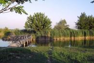 Fonyódi Horgászpark