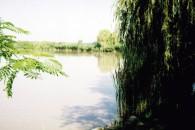 Pintér-hídi szabadidő és horgásztó - Pintér-hídi szabadidő és horgásztó I Mindszent