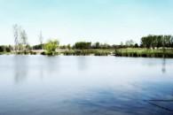 Pintér-hídi szabadidő és horgásztó horgásztó - Mindszent