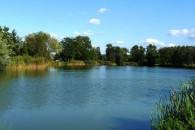 Harangozó tó horgásztó - Tápióbicske