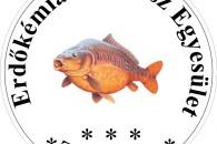 Tolmacsi Tó horgásztó - Diósjenő