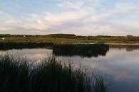 Don Carp Lake